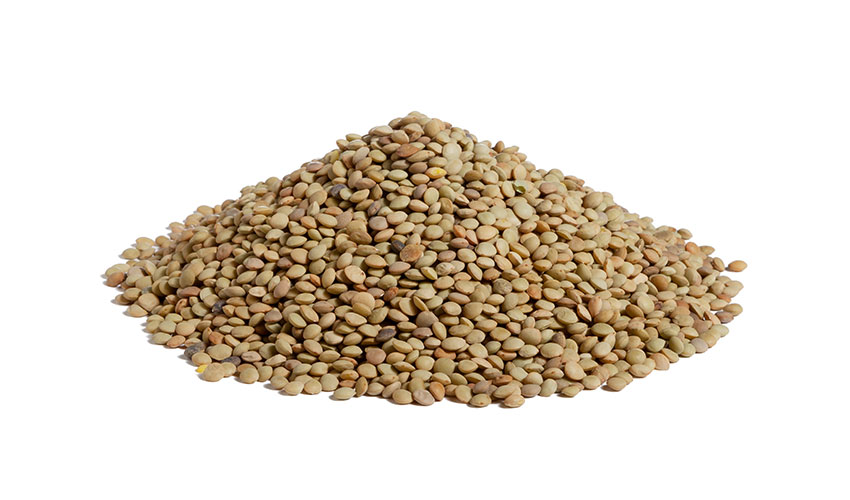 GREEN LENTILS - Small size and irregular shape, this kind of legume is brown – from light to dark. Coltivated in barren and stony lands, it is the ideal ingredient for preparing soups and side dishes.