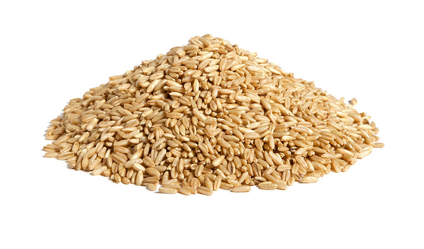 OAT - It's an herbaceous plant, it gives cereal grains that are rich in healthy features. It can be tried both as flakes and raw. Our steam precooking process allows to keep uncompromising all the nutritional features.