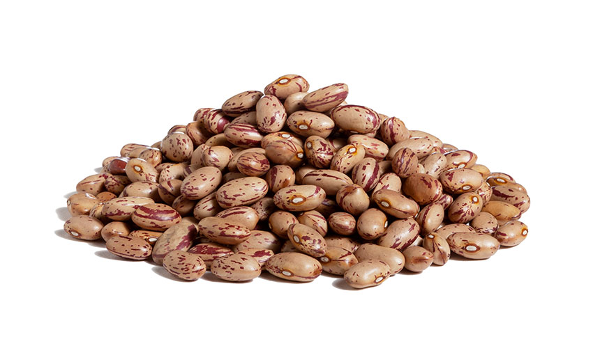 BORLOTTI BEANS - Imported following the America discovery, they became the substitutes of the European type because they are easier to grow and with a higher productive yeld. Borlotti beans are suitable for vegetarian and vegan diets, especially if it's mixed with cereals, like in Geovita's products.