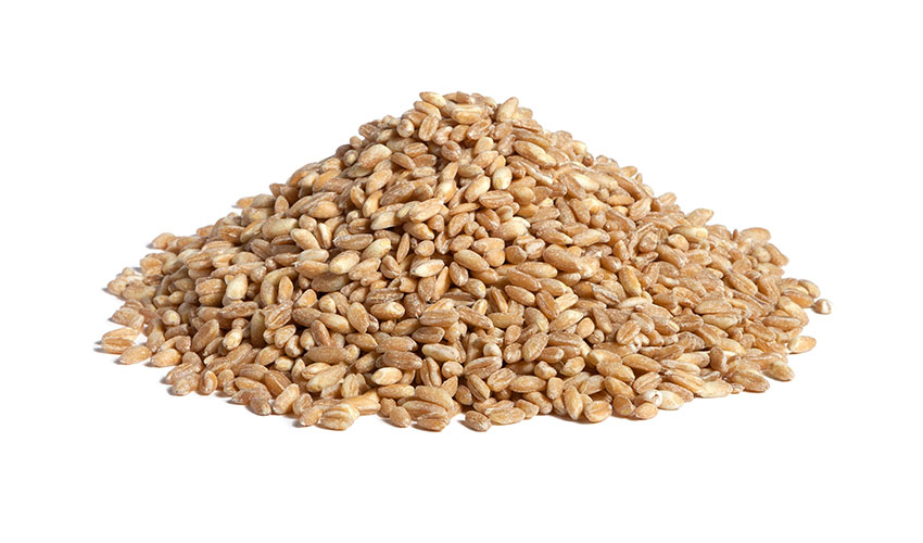 FARRO (SPELT) - Rich in fiber and precious selenium source, mineral with important anti age features, thanks to our natural steam precooking process, it doesn't need soaking before the cooking. Our farro it's perfect for preparing soups and salads in just 5 mins!